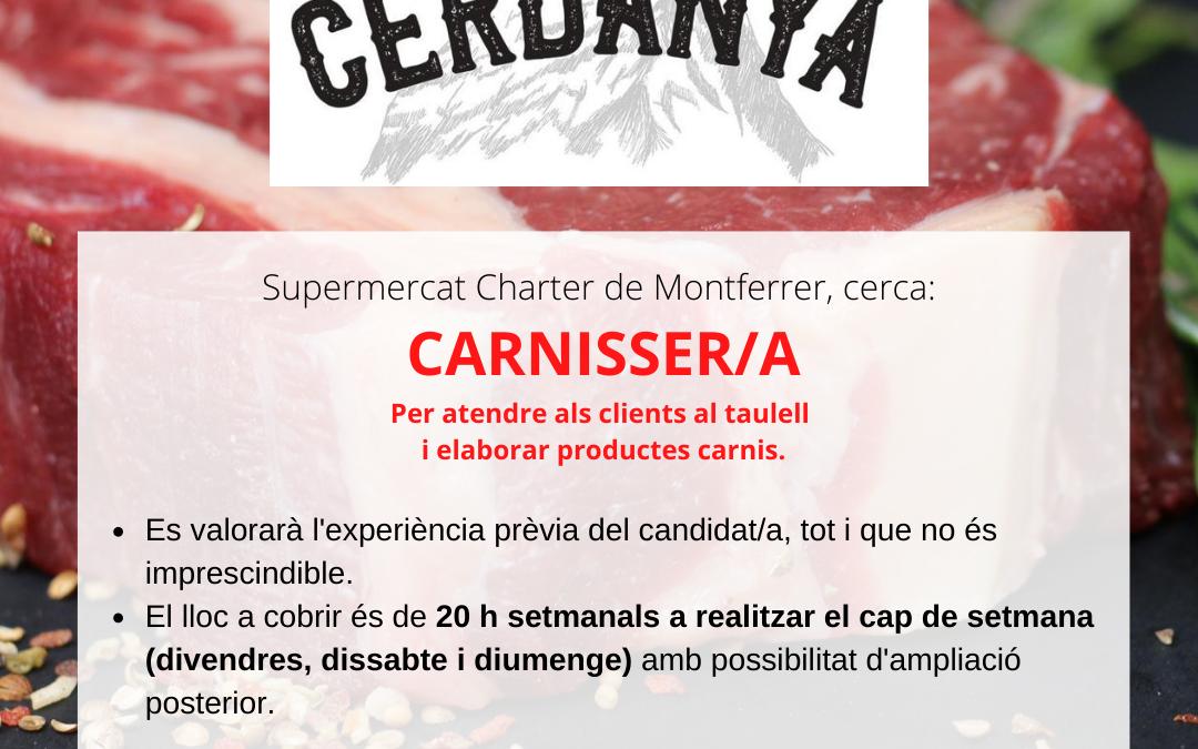 📢 Cerca: CARNISSER/A