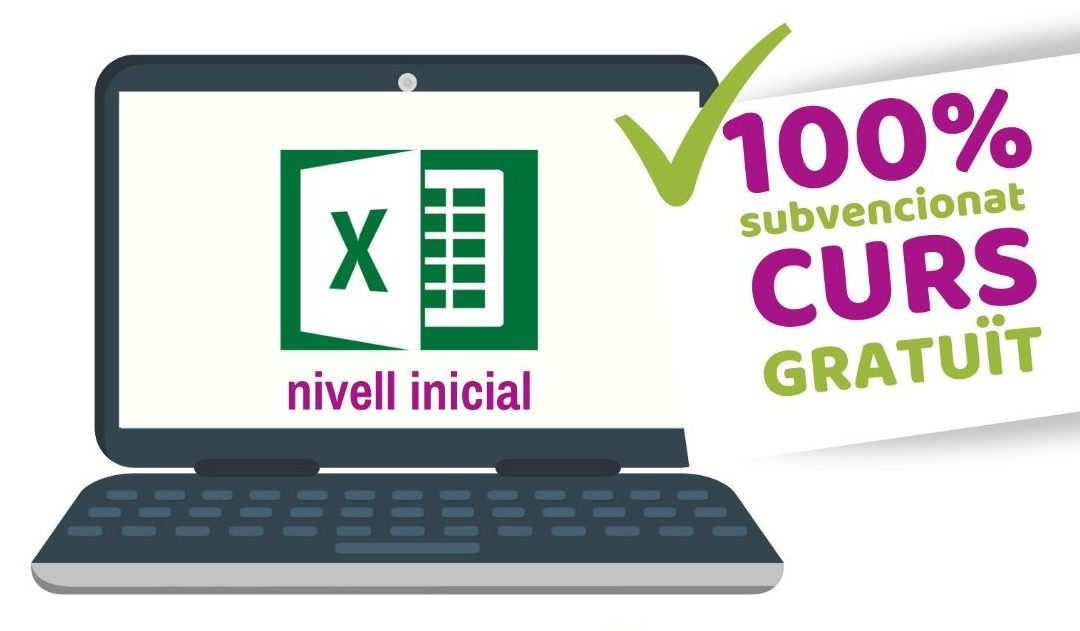 🎓CURS EXCEL 2016 INICIAL 🌎💻 ON-LINE